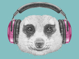 Portrait of Mongoose with Headphones. Hand Drawn Illustration. Art by  victoria_novak