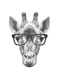 Portrait of Giraffe with Glasses. Hand Drawn Illustration. Posters por  victoria_novak