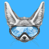 Portrait of Fennec Fox with Ski Goggles. Hand Drawn Illustration. Art by  victoria_novak