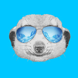 Portrait of Mongoose with Mirror Sunglasses. Hand Drawn Illustration. Posters by  victoria_novak