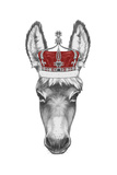 Portrait of Donkey with Crown. Hand Drawn Illustration. Prints by  victoria_novak