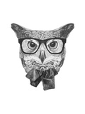Original Drawing of Owl with Glasses and Bow Tie. Isolated on White Background. Posters by  victoria_novak