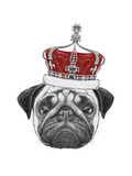 Original Drawing of Pug Dog with Crown. Isolated on White Background Posters by  victoria_novak
