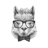 Portrait of Lama with Glasses and Bow Tie. Hand Drawn Illustration. Premium Giclee Print by  victoria_novak