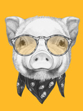 Portrait of Piggy with Scarf and Glasses. Hand Drawn Illustration. Posters by  victoria_novak