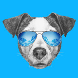 Portrait of Jack Russell Dog with Mirror Sunglasses. Hand Drawn Illustration. Premium Giclee Print by  victoria_novak