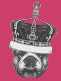 Original Drawing of English Bulldog with Crown. Isolated on Colored Background Print by  victoria_novak