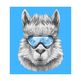 Portrait of Lama with Ski Goggles. Hand Drawn Illustration. Premium Giclee Print by  victoria_novak