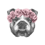 Original Drawing of English Bulldog with Floral Head Wreath. Isolated on White Background. Poster by  victoria_novak