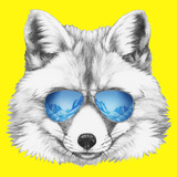 Portrait of Fox with Mirror Sunglasses. Hand Drawn Illustration. Prints by  victoria_novak