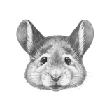 Portrait of Mouse. Hand Drawn Illustration. Prints by  victoria_novak