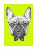 Original Drawing of French Bulldog with Glasses and Bow Tie. Isolated on Colored Background Posters by  victoria_novak