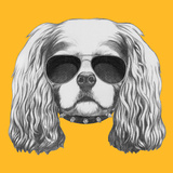 Portrait of Cavalier King Charles Spaniel with Sunglasses and Collar. Hand Drawn Illustration. Posters by  victoria_novak