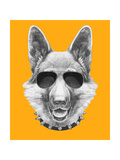 Portrait of German Shepherd with Sunglasses and Collar. Hand Drawn Illustration. Prints by  victoria_novak