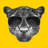 Portrait of Panther with Sunglasses and Collar. Hand Drawn Illustration. Plakater af victoria_novak