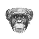Original Drawing of Monkey. Isolated on White Background. Prints by  victoria_novak