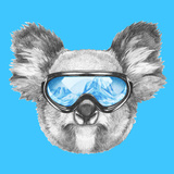 Portrait of Koala with Ski Goggles. Hand Drawn Illustration. Posters by  victoria_novak