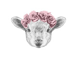 Portrait of Lamb with Floral Head Wreath. Hand Drawn Illustration. Prints by  victoria_novak
