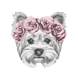 Portrait of Yorkshire Terrier Dog with Floral Head Wreath. Hand Drawn Illustration. Posters by  victoria_novak