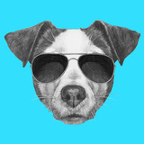 Original Drawing of Jack Russell with Sunglasses. Isolated on Colored Background Prints by  victoria_novak
