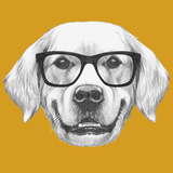 Portrait of Golden Retriever with Glasses. Hand Drawn Illustration. Prints by  victoria_novak