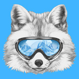 Portrait of Fox with Ski Goggles. Hand Drawn Illustration. Prints by  victoria_novak