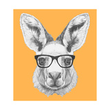 Portrait of Kangaroo with Glasses. Hand Drawn Illustration. Plakater af  victoria_novak