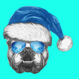 Portrait of English Bulldog with Santa Hat and Sunglasses. Hand Drawn Illustration. Prints by  victoria_novak