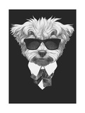 Portrait of Maltese Poodle in Suit. Hand Drawn Illustration. Art by  victoria_novak