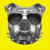 Original Drawing of English Bulldog with Collar and Sunglasses. Isolated on Colored Background Posters by  victoria_novak