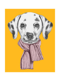Portrait of Dalmatian with Scarf. Hand Drawn Illustration. Posters af  victoria_novak