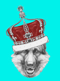 Portrait of German Shepherd with Crown. Hand Drawn Illustration. Posters by  victoria_novak