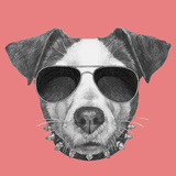 Original Drawing of Jack Russell with Collar and Sunglasses. Isolated on Colored Background Prints by  victoria_novak