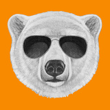 Portrait of Polar Bear with Sunglasses. Hand Drawn Illustration. Posters by  victoria_novak
