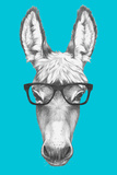Portrait of Donkey with Glasses. Hand Drawn Illustration. Posters by  victoria_novak