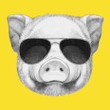 Portrait of Piggy with Sunglasses. Hand Drawn Illustration. Poster von  victoria_novak
