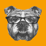 Original Drawing of English Bulldog with Glasses. Isolated on Colored Background Prints by  victoria_novak