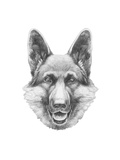 Portrait of German Shepherd. Hand Drawn Illustration. Prints by  victoria_novak