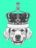 Portrait of Golden Retriever with Crown. Hand Drawn Illustration. Poster by  victoria_novak
