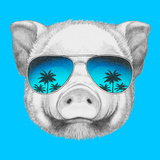 Portrait of Piggy with Mirror Sunglasses. Hand Drawn Illustration. Premium Giclee Print by  victoria_novak