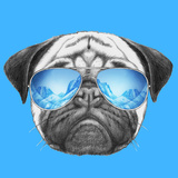Portrait of Pug Dog with Mirror Sunglasses. Hand Drawn Illustration. Print by  victoria_novak