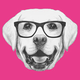 Portrait of Labrador with Glasses. Hand Drawn Illustration. Prints by  victoria_novak