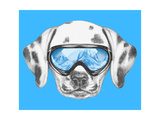 Portrait of Dalmatian with Ski Goggles. Hand Drawn Illustration. Posters by  victoria_novak