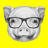 Portrait of Piggy with Glasses. Hand Drawn Illustration. Prints by  victoria_novak