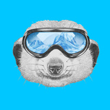 Portrait of Mongoose with Ski Goggles. Hand Drawn Illustration. Print by  victoria_novak