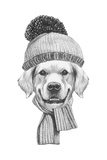 Portrait of Golden Retriever with Scarf and Hat. Hand Drawn Illustration. Print by  victoria_novak