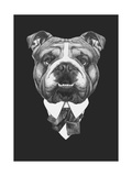 Portrait of English Bulldog in Suit. Hand Drawn Illustration. Posters by  victoria_novak