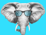 Portrait of Elephant with Glasses. Hand Drawn Illustration. Prints by  victoria_novak