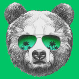 Original Drawing of Bear with Mirror Sunglasses. Isolated on Colored Background Prints by  victoria_novak