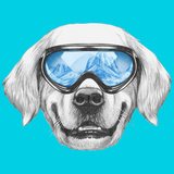 Portrait of Golden Retriever with Ski Goggles. Hand Drawn Illustration. Premium Giclee Print by  victoria_novak